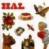 HAL 1st Album