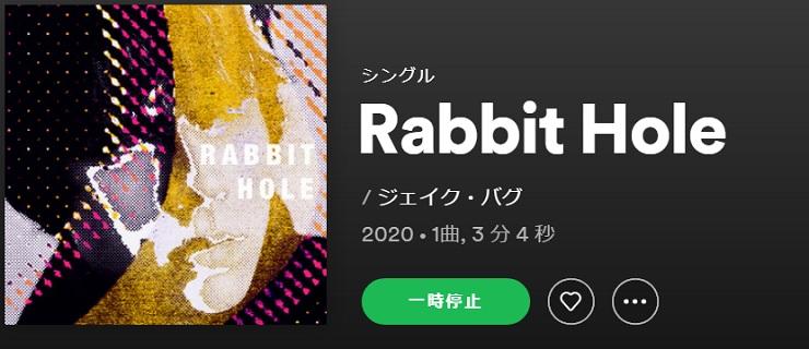 JAKE BUGG Rabbit Hole single