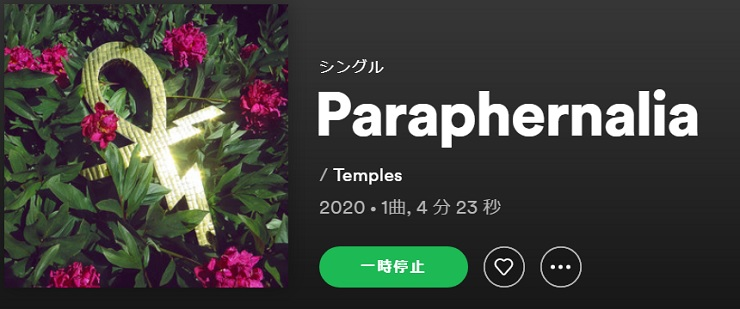 TEMPLES Paraphernalia single