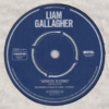 【おすすめの洋楽】Acoustic Sessions(2020)/ LIAM GALLAGHER